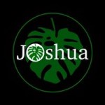 Joshua lounge cafe